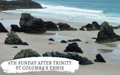 9th Sunday after Trinity – Hope when all else has failed