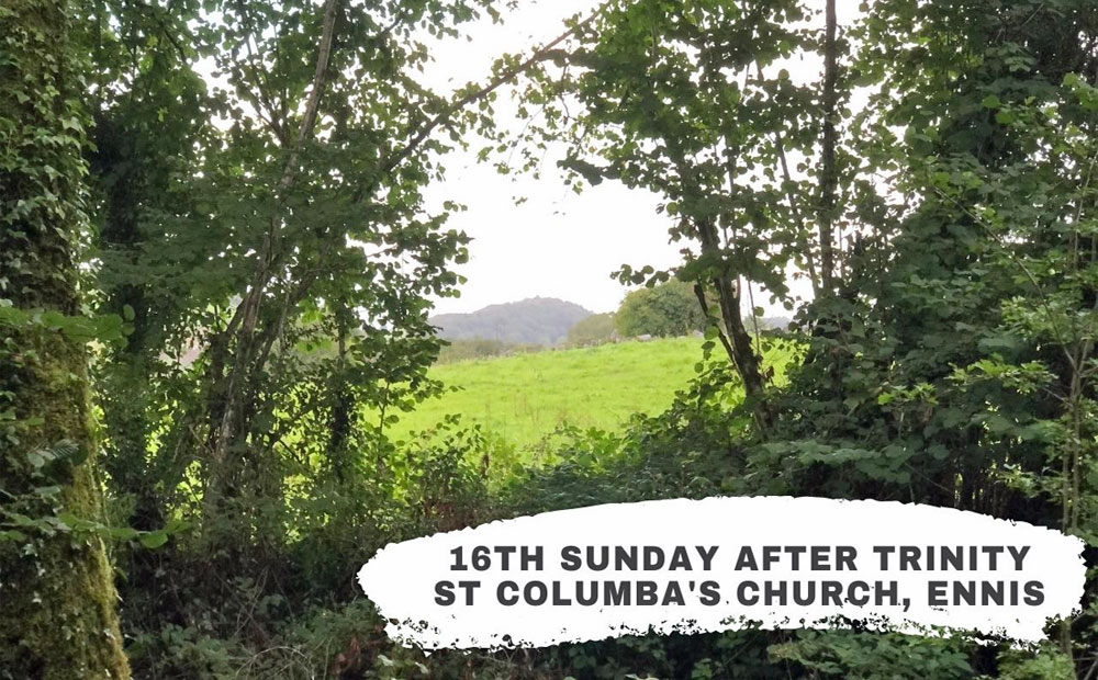 16th Sunday after Trinity – Are we converted?