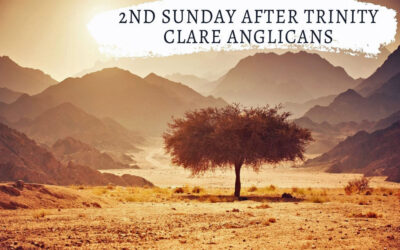 2nd Sunday after Trinity – Tinkering at the edges?