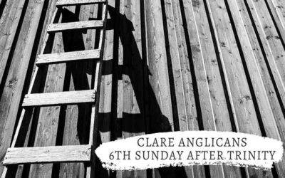 6th Sunday after Trinity – The wrong ladder and the wrong wall
