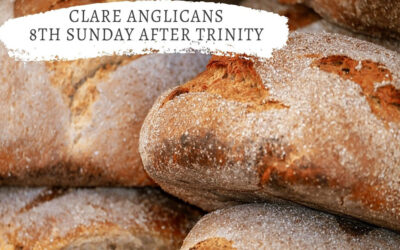 8th Sunday after Trinity – How can they be fed?