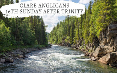 16th Sunday after Trinity – What brings you joy?